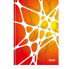 8421-121-A Книга канцелярская А4 Net, 80л., клет., УФ-лак, белыйAXENT